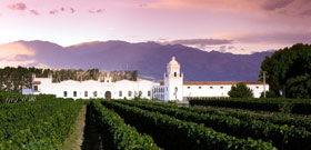 Wine Tours in Argentina