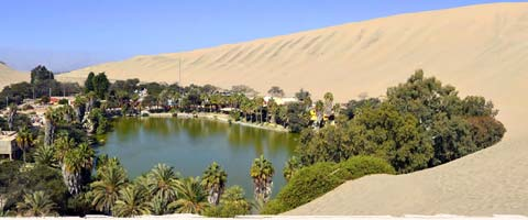 Holidays in Huacachina